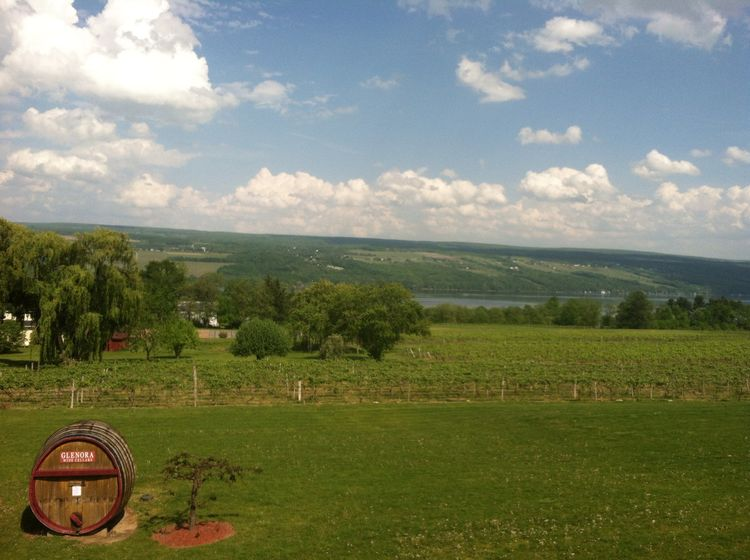 Finger Lakes - Glenora Winery