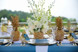 Golden Pineapple Elopement in North Carolina