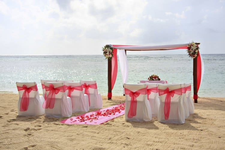 Pink beach wedding arch decorations
