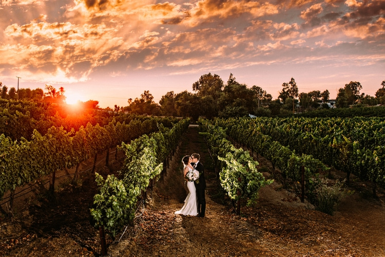 winery destination wedding 93