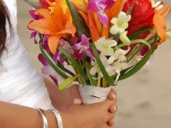 Bouquet 53 240x180