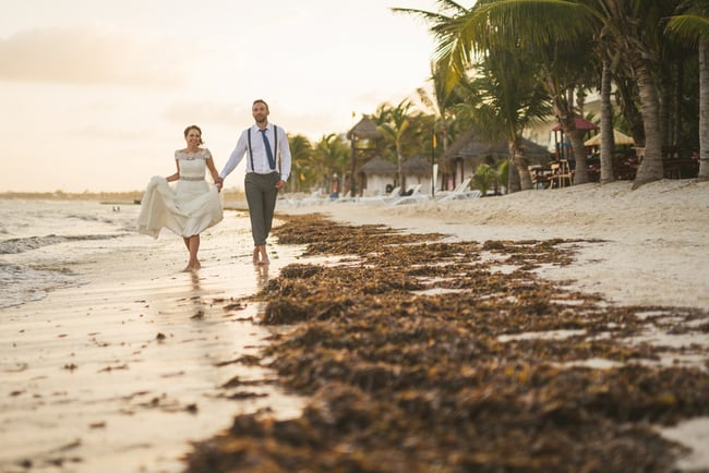 Destination Wedding at Azul Sensatori 108
