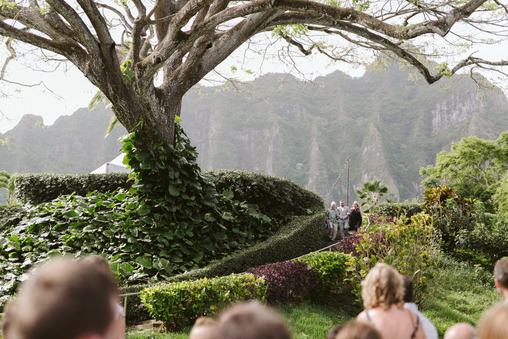 Hawaiian Mountain Wedding Ceremony