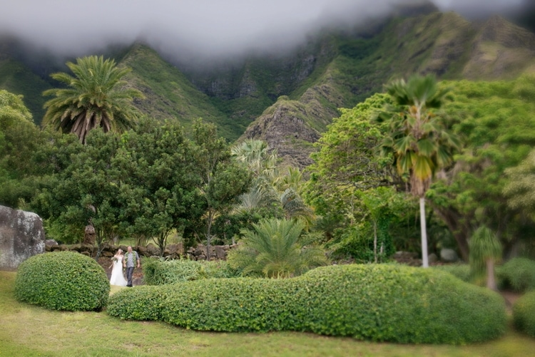 Kualoa Ranch wedding 148