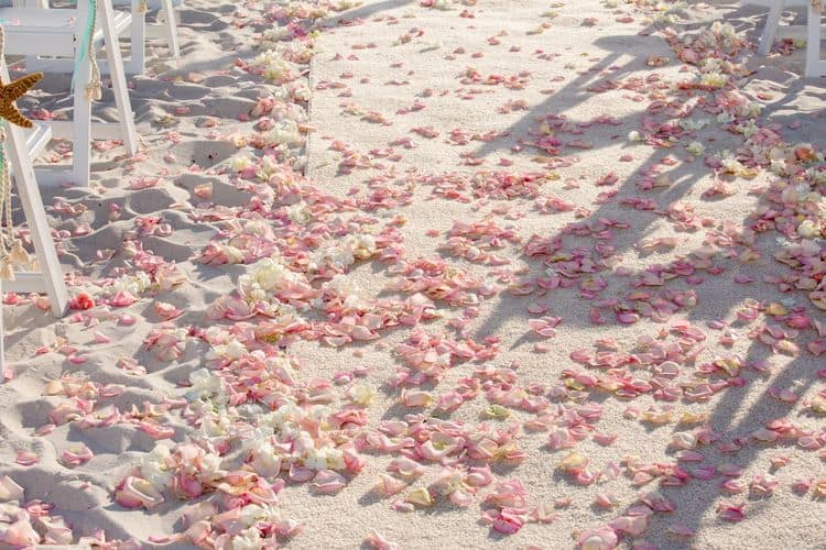 destination beach wedding in florida
