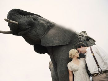 This Safari Destination Wedding is Out of This World