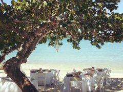 best st thomas wedding planner 3 240x180