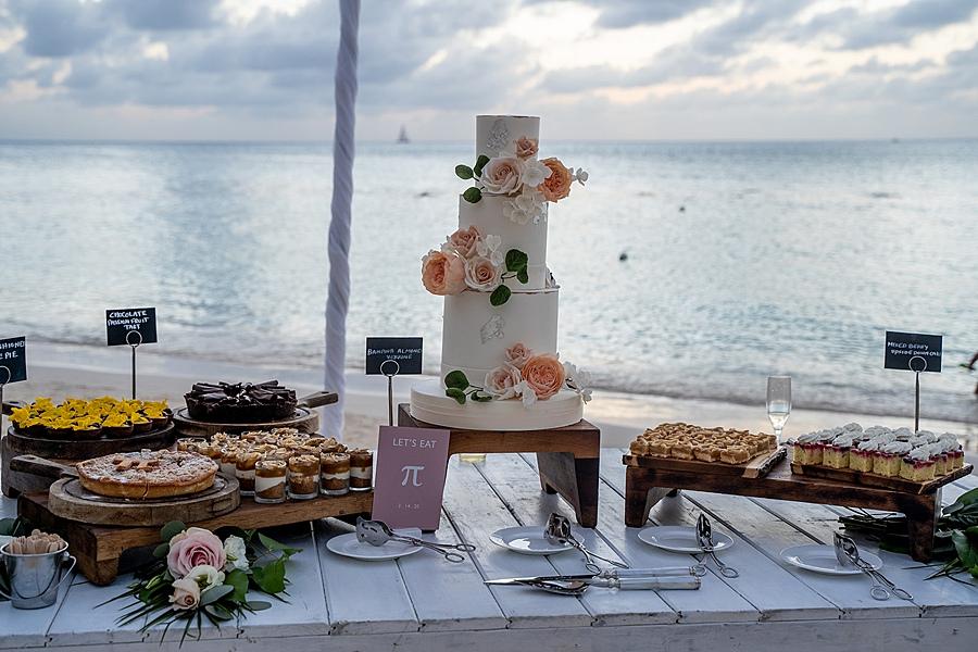 covid destination wedding 0105