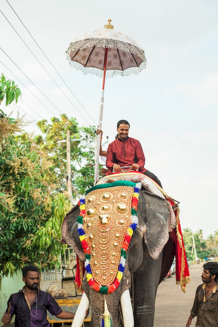 destination wedding in India 54 1