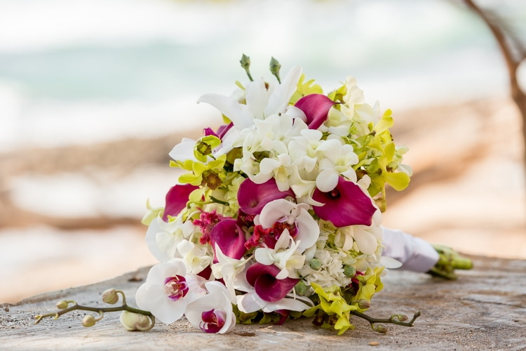 destination wedding tamarindo costa rica 128