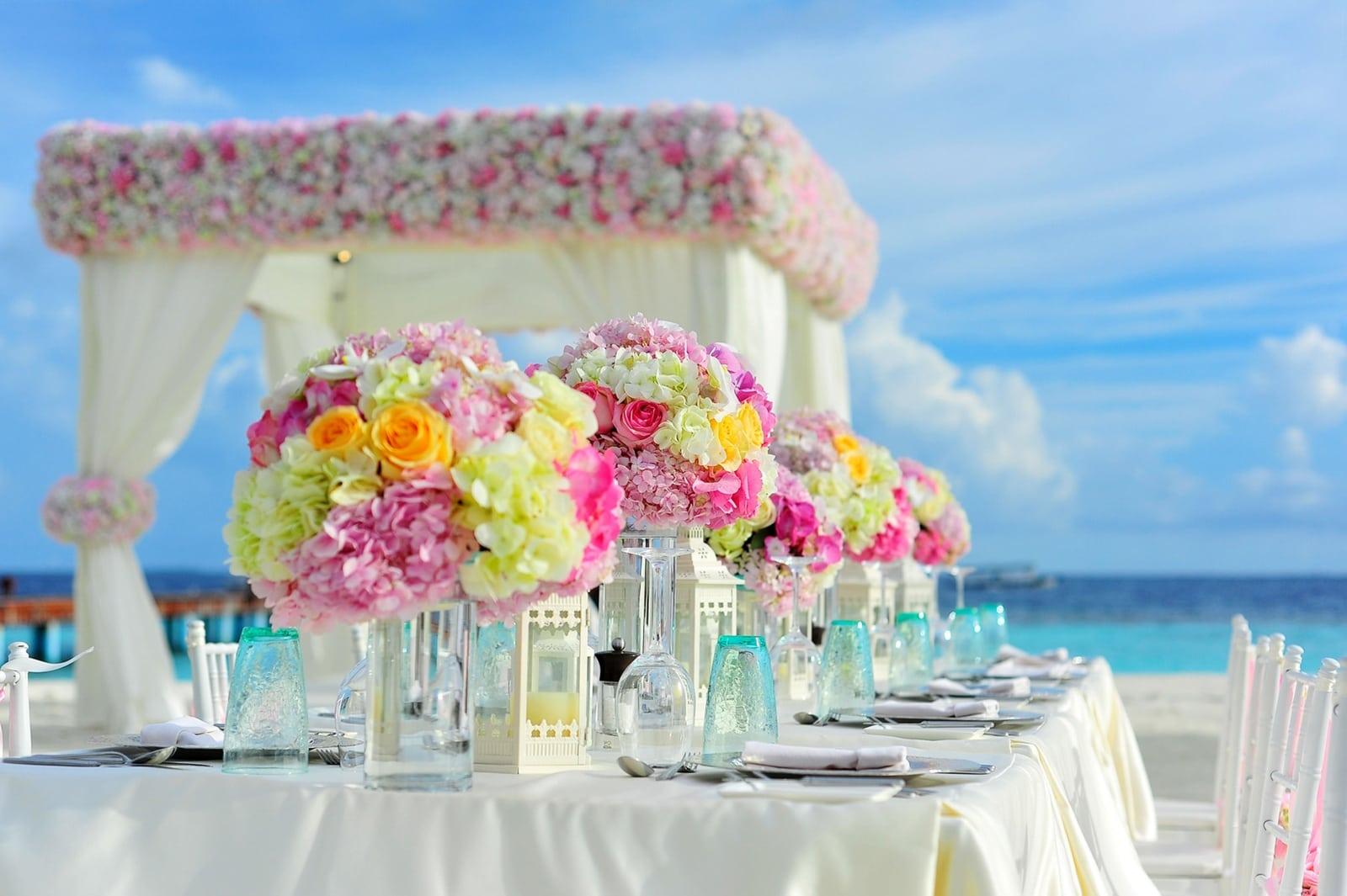 The Next Generation Destination Wedding Travel Company Details