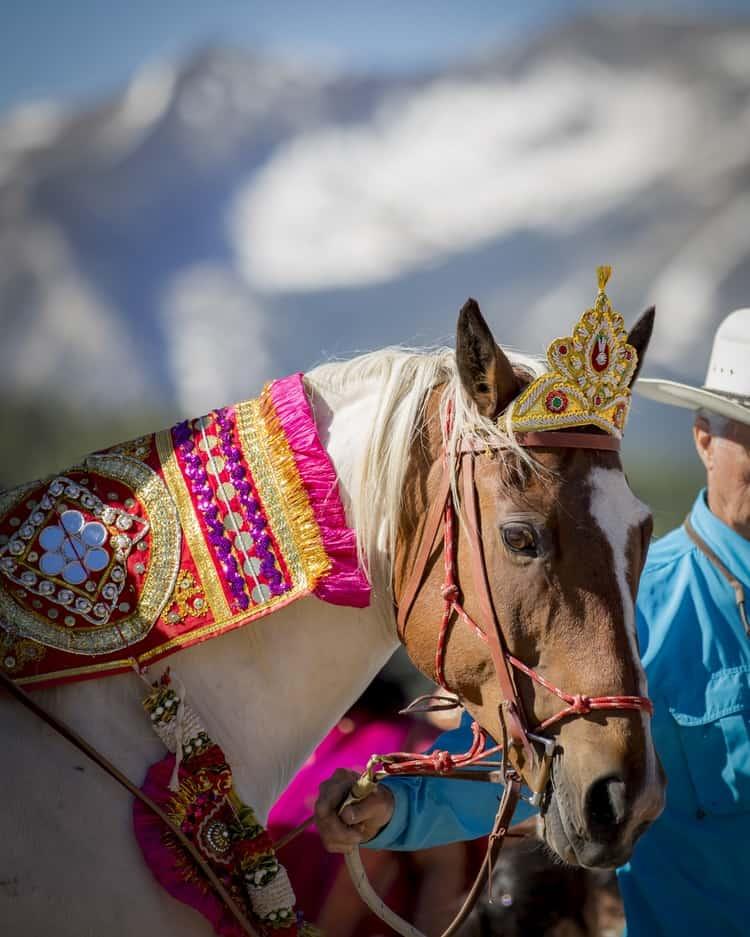 indian wedding in colorado mountains 59