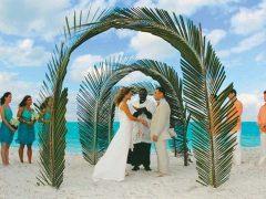 mainpic wedding arches 1 240x180
