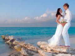 mainpic wedding couple 1 240x180