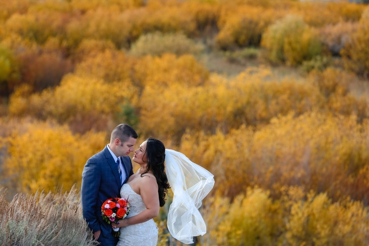 mountain destination wedding 21