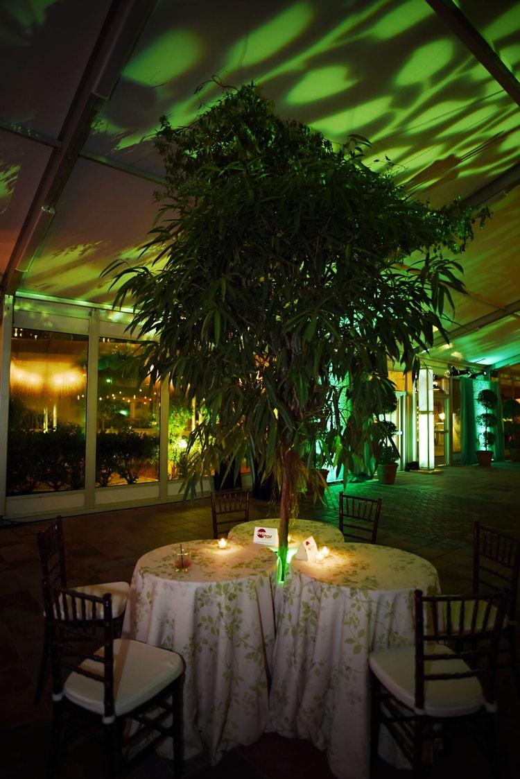 orlando wedding venue 07