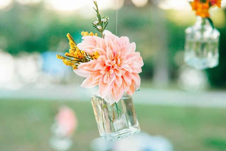 sarasota wedding 7