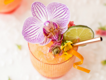 5 Signature Cocktails for Your Destination Wedding