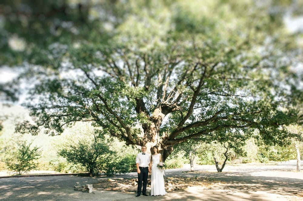 8 Unique Southern Wedding Traditions Destination Wedding Details