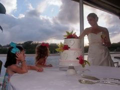 wedding jacquie and justin let them eat cake 240x180