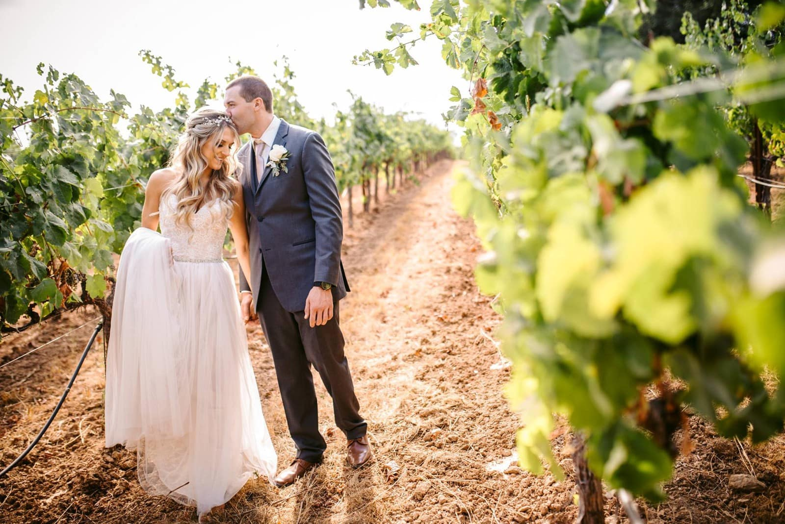 49a04b8843 Discover The Dalton Ranch | A Hidden Gem for Wine Country Weddings |  Destination Wedding Details