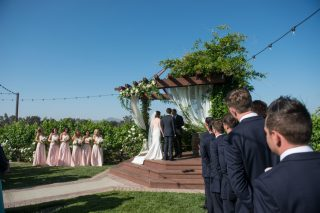winery destination wedding 129 320x213